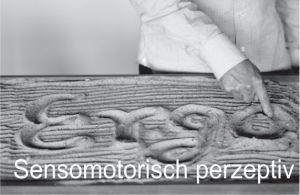 Sensomotrisch perzeptive Behandlung